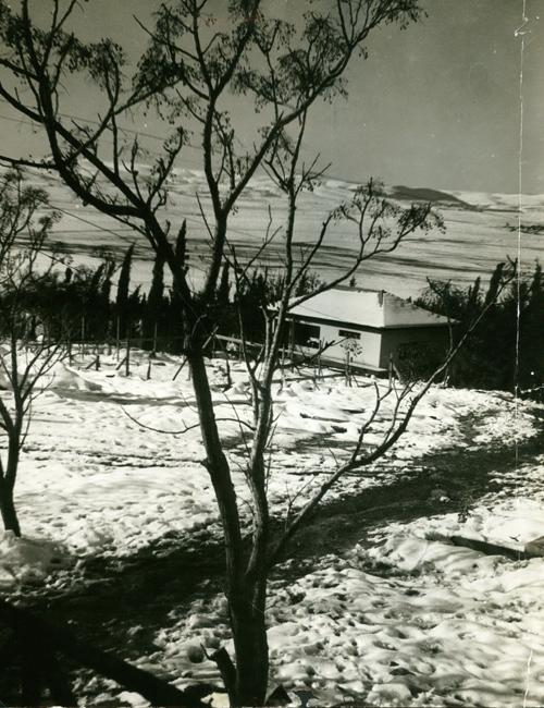 תמונה של קיבוץ שריד תחת מעטה לבן