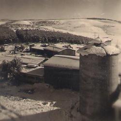 תמונה של הסילו וחצר הקיבוץ בשלג