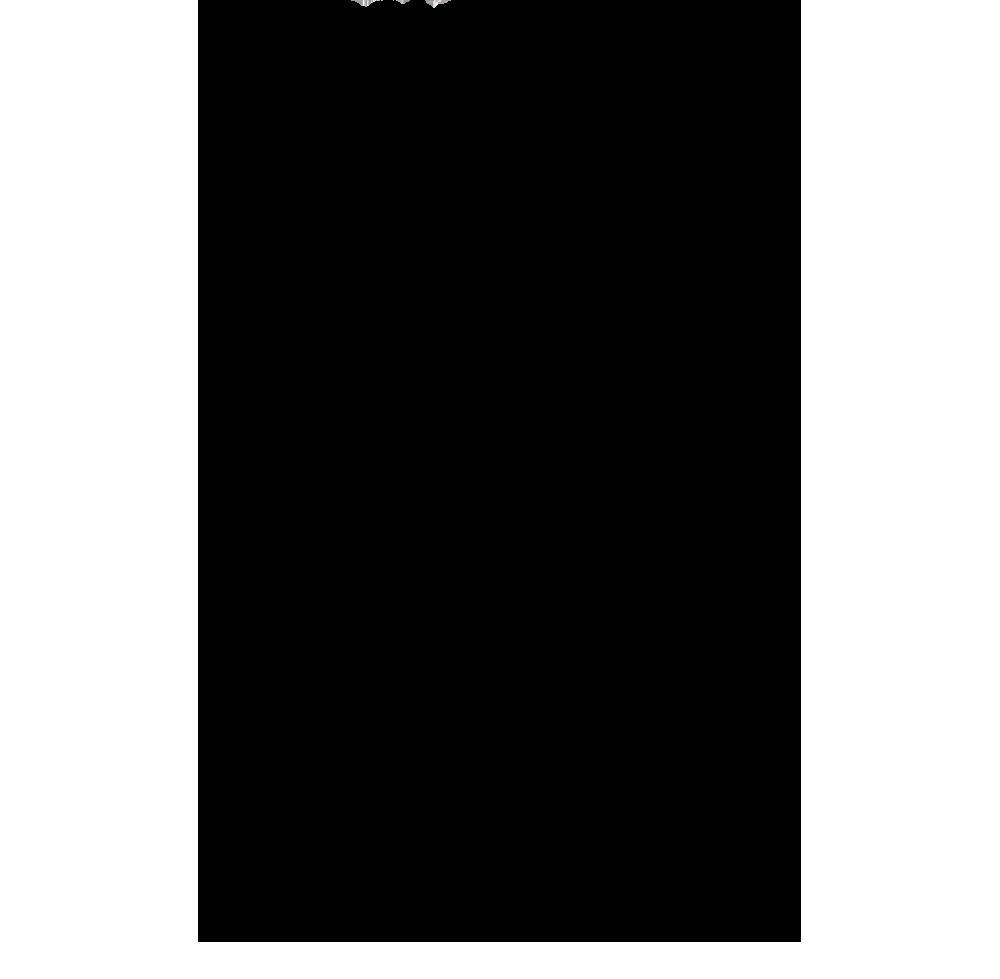 טקסט של מרים אגסי