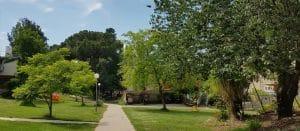 תמונה של השכונה הצפונית בשריד