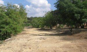 תמונה של פינוי הקרוואנים וניקוי השטח