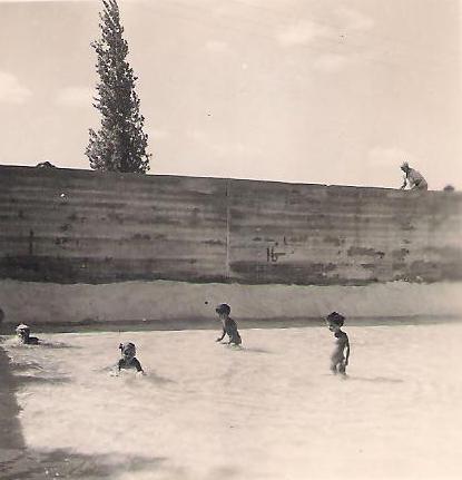 תמונה של בריכת השחייה