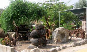 תמונה של הגינה-של-חגי-ספר