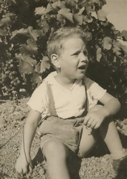 תמונה של שאול גולומביק בכרם. אמצע שנות השלושים