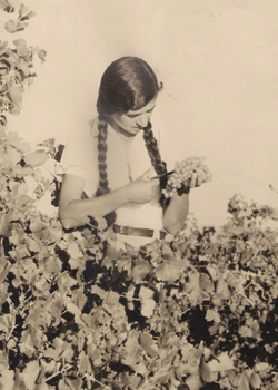 תמונה של הצעירה עם הצמות - חסיה נימרי - 1937