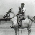 תמונה של על-הסוס-אריה-אראלי-עם-בתו-ר