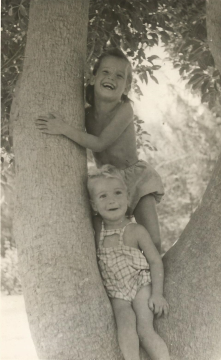 תמונה של עץ-הפיתולקה