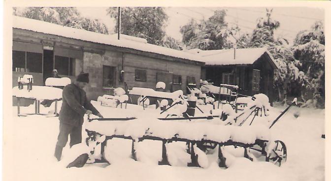 תמונה של שלג - 1951 - המחרשה מכוסה שלג - צילם עלי רר