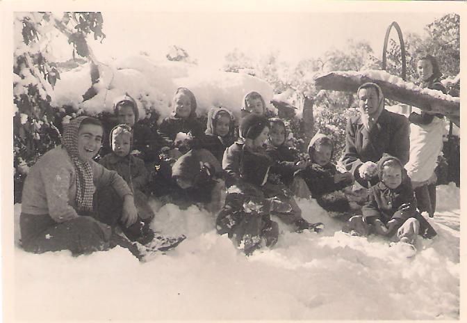 תמונה של שלג בשריד
