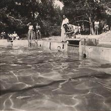 תמונה של הפתח ממנו מילאו את הבריכה