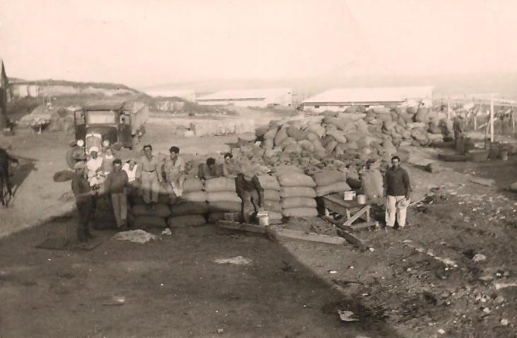 תמונה של מנוחה בגורן שנת 1934