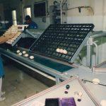 תמונה של חנה סלוצקי במחסן ביצים