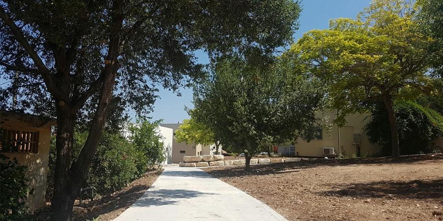 תמונה של שביל חדש בחצר הקיבוץ