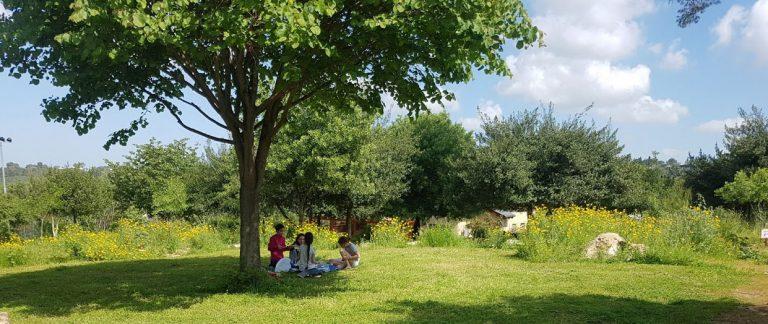 תמונה של פארק חווה