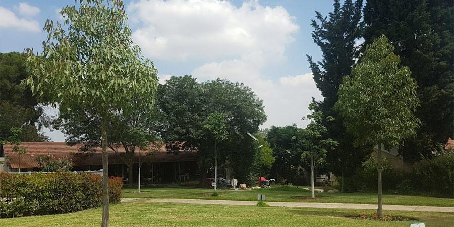 תמונה של הדשא ליד בית הבריאות