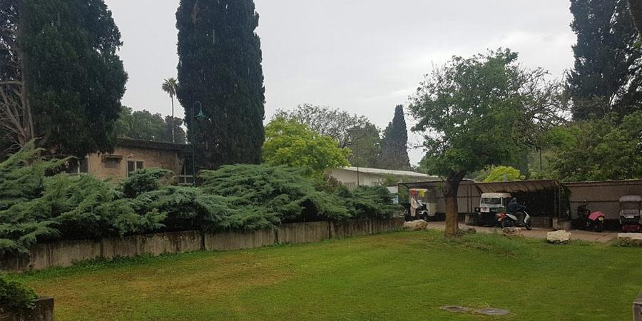 תמונה של גשם באמצע מאי