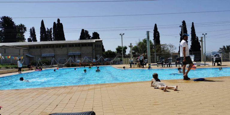 תמונה של בריכת השחייה בשריד